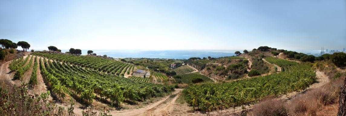 panoramisch zicht amfitheater richting kust